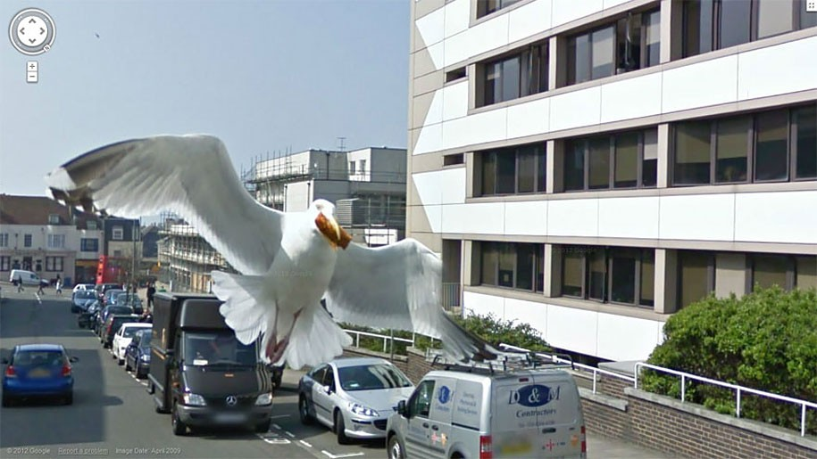 TechieApps-Google Earth and Google Street View pics-Con Bird