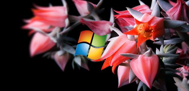 Techieapps-Windows 8 HD Wallpapers-20