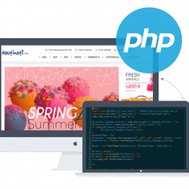 php for website development